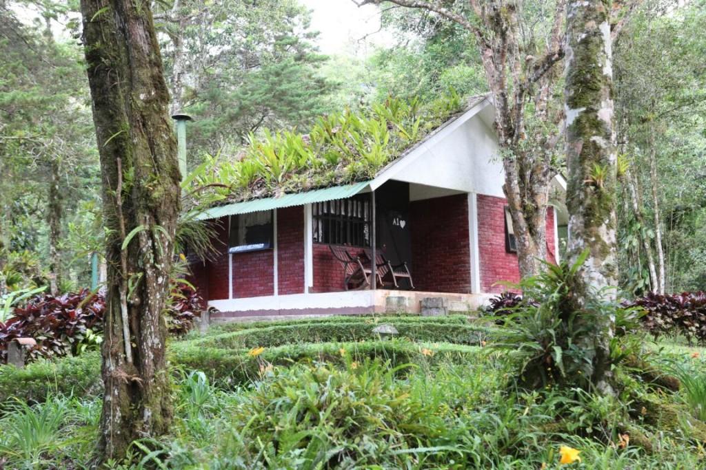 Hut at Selva Negra Ecolodge, Nicaragua