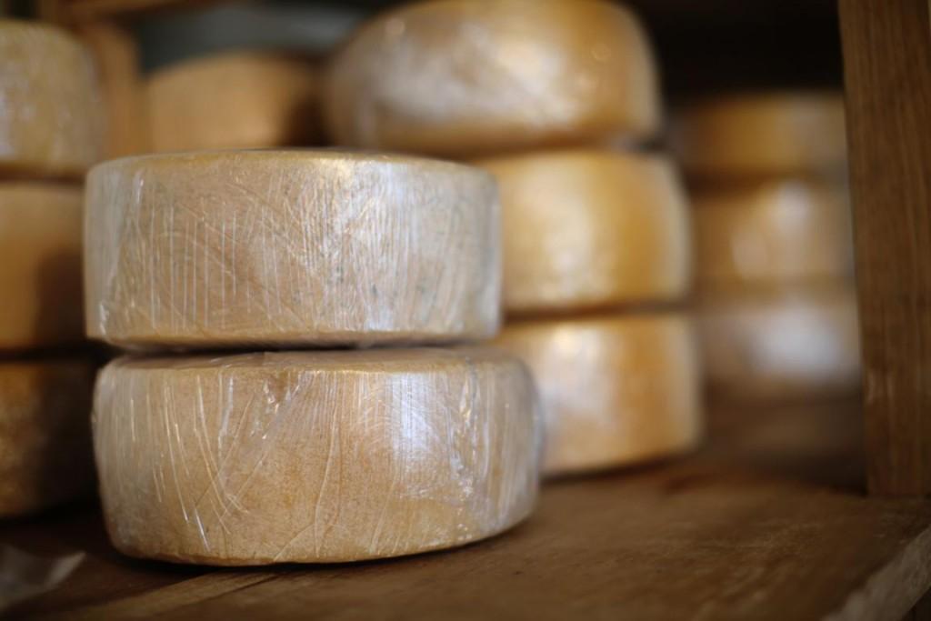 Cheese making at Selva Negra Ecolodge, Nicaragua