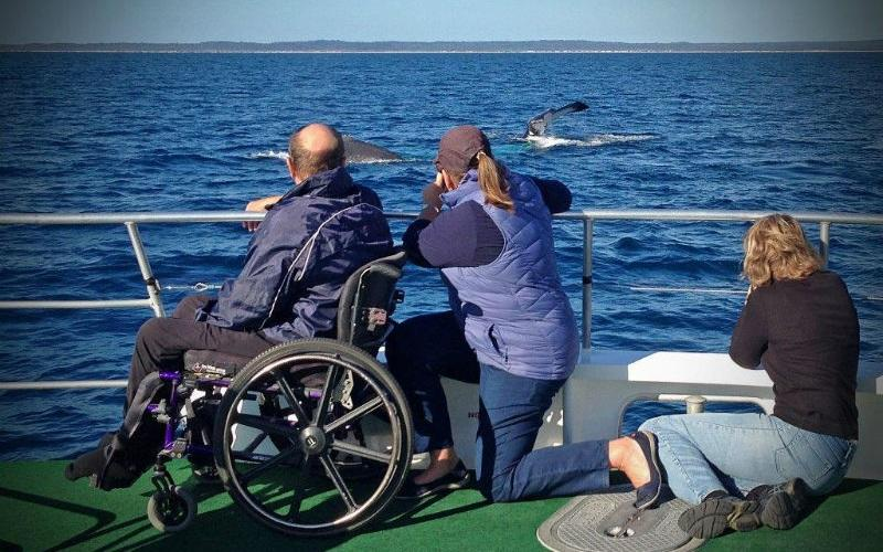 Accessible Whale Watch Hervey Bay Queensland