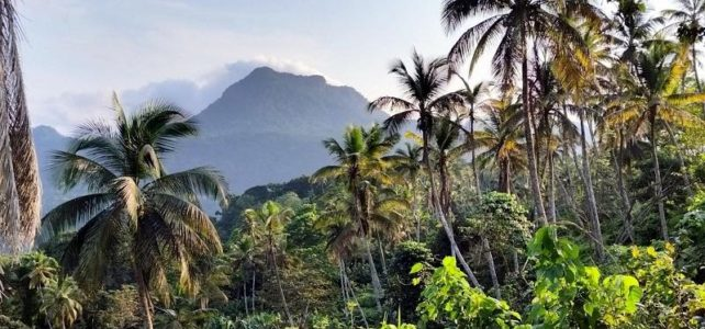Principe Island Destination, Africa