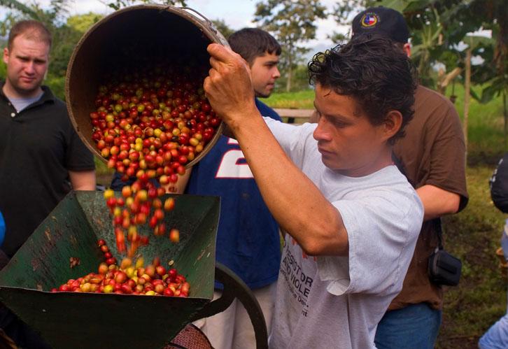 Coffee Worker La Corona, Nicaragua