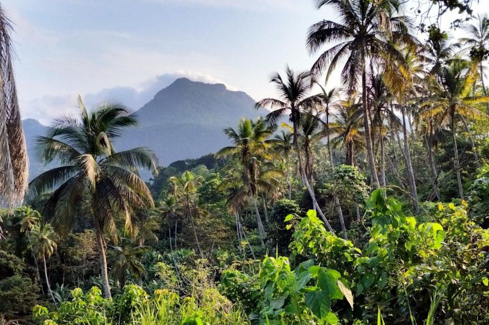 Destino Biosphere Isla Príncipe África Occidental