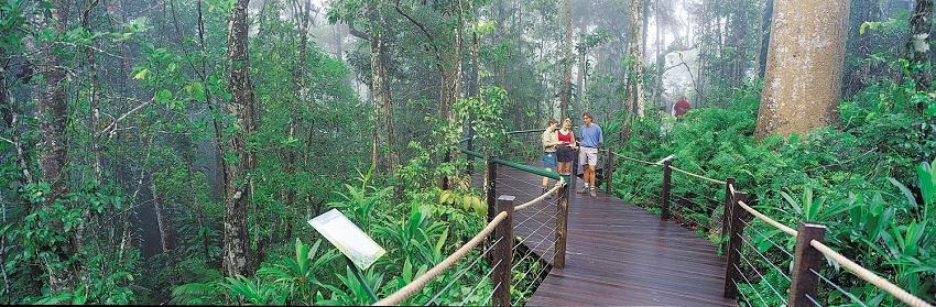 Teleférico Skyrail Rainforest Estacion Red Peak