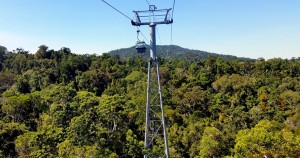 Teleférico Skyrail Rainforest Eco actividad en Cairns, Australia