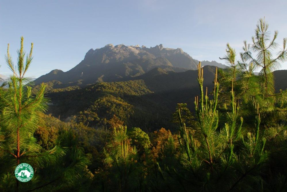 Borneo ecotourism