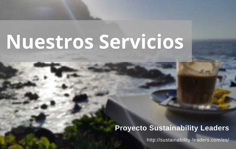 Nuestros Servicios - Proyecto Sustainability Leaders
