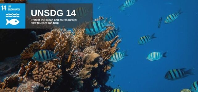 UNSDG 14 Protect the Ocean and Marine Life