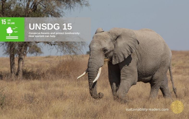 UNSDG 15 Conserve Forests and Protect Biodiversity